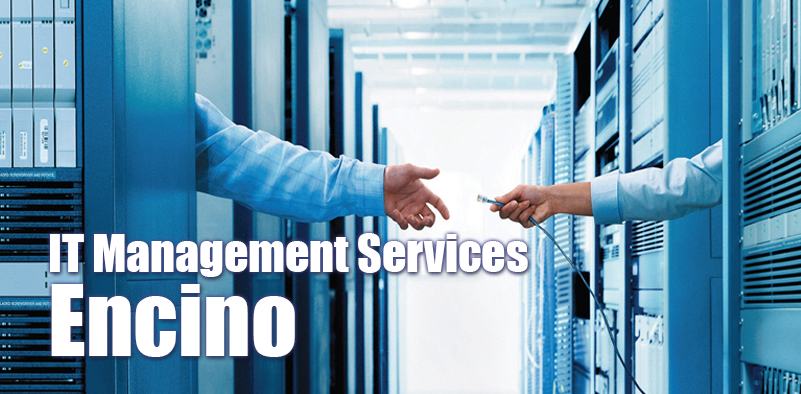 IT Services for Companies in Encino